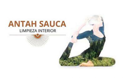 ANTAH SAUCA · LIMPIEZA INTERIOR